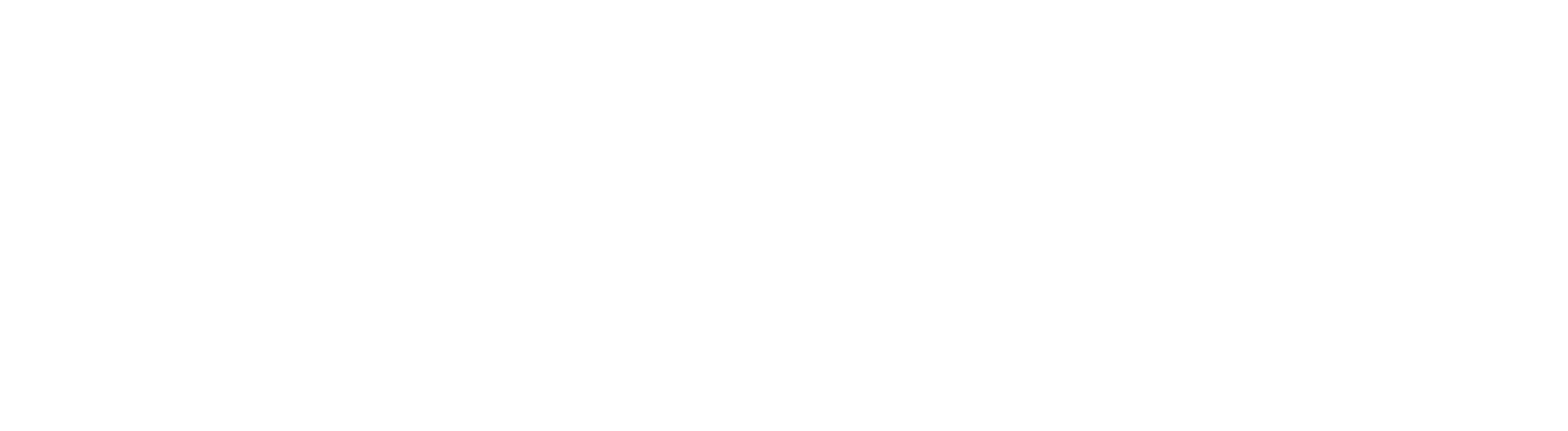 Monogram_Logotype AVM DE_RGB_Web_White